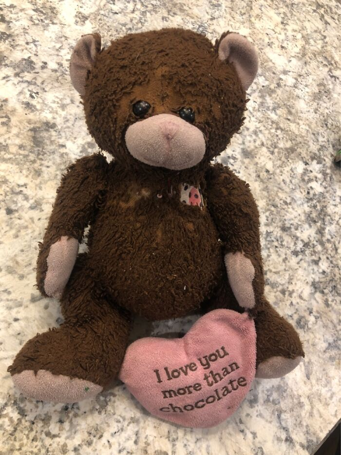 """This Is """"Lovey""""...she Has Been With Me And Then My Daughter Since Birth, She Has Seen Things"""