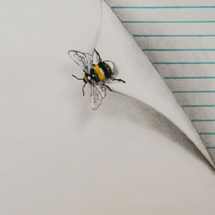 I Draw These Illusions With Cute Little Insects (6 Pics)
