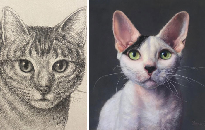 My First Cat Drawing vs. Recent One. If You Are Not Happy With Your Results Right Now, Just Keep Going. Eventually You Will Improve