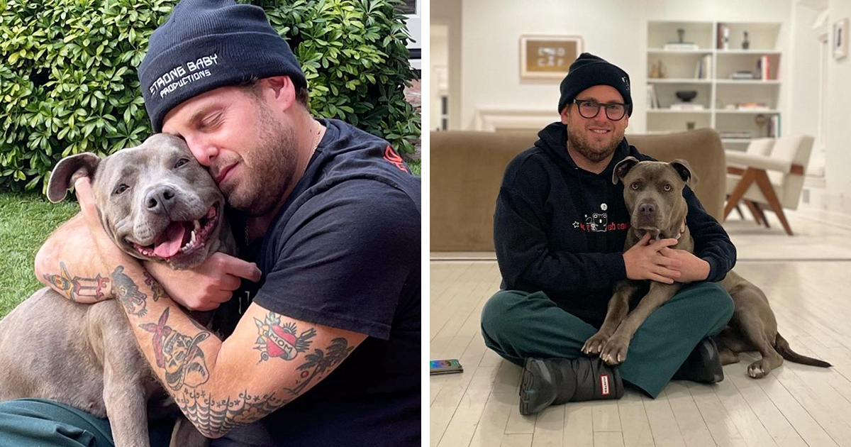 Actor Jonah Hill Adopts A Pit Bull Named Fig, Goes On Instagram To Express Gratitude