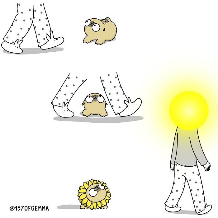 Life-With-Pug-Mochi-Comic-Gemma-Gene-157ofgemma