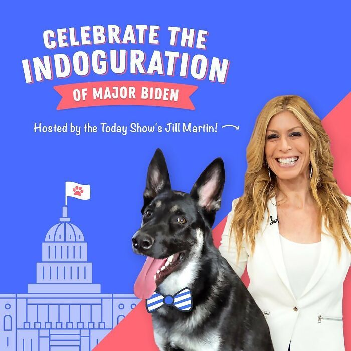 """Major Biden, First Rescue Dog In The White House, Had A Virtual """"Indoguration"""" That Attracted 10,000 Viewers"""