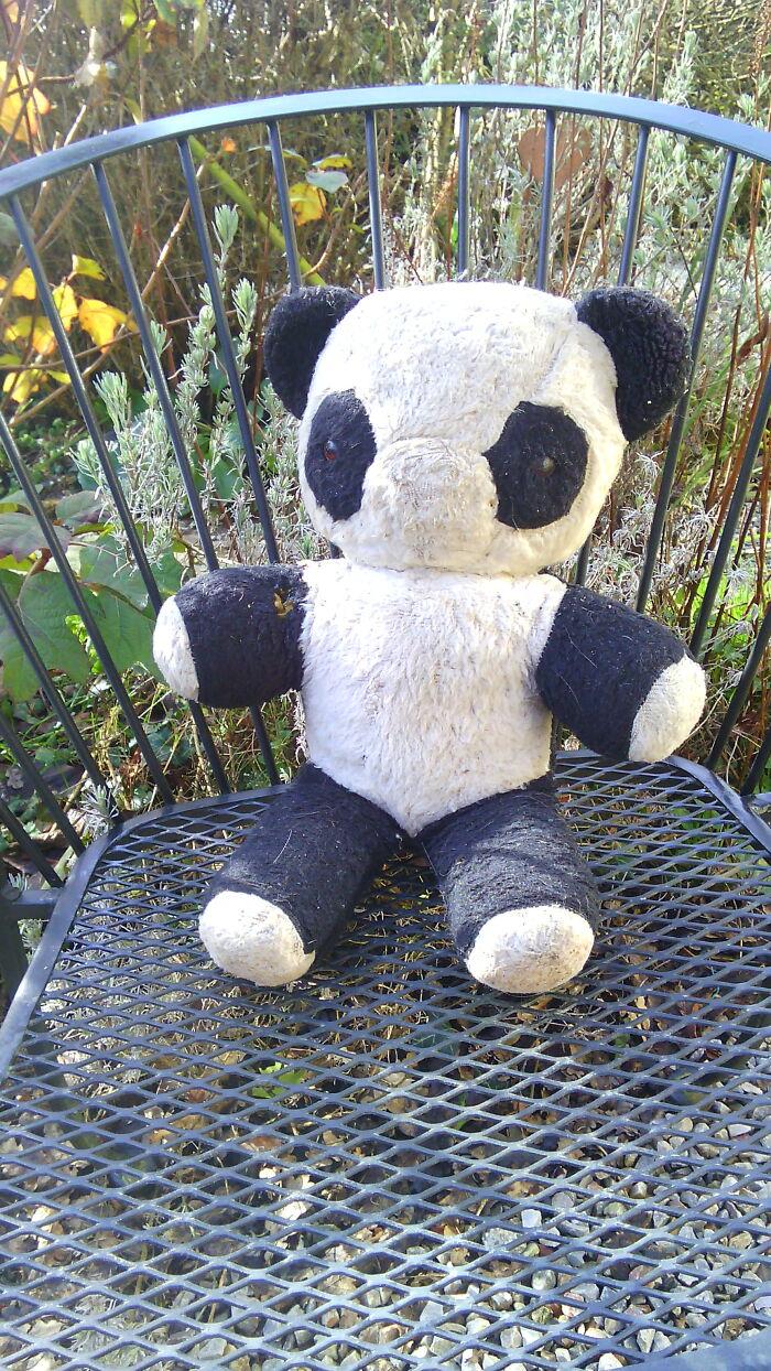 Miranda The Panda