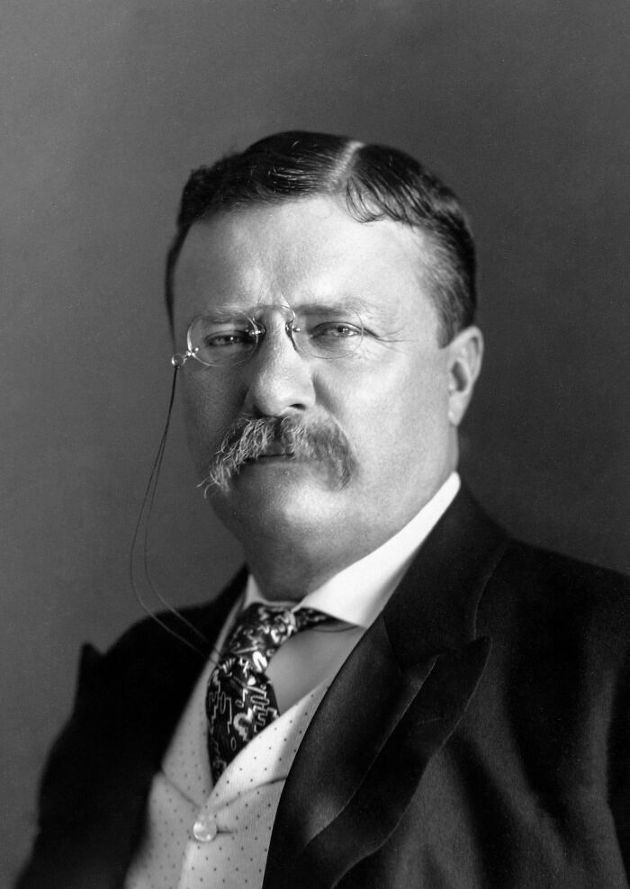 If More Republican Delegates Had Backed Roosevelt At The 1912 Convention In Chicago, There Might Have Never Been A World War 2 Or Cold War, And The World Would Be A Vastly Different Place Today
