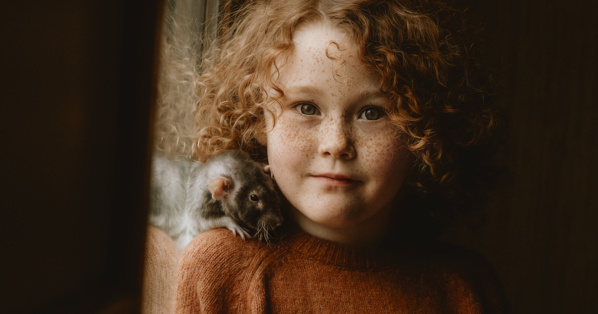 Photographer Captures An Adorable Photoshoot Of This Girl And Her Pet Rat Named Disco Bacon