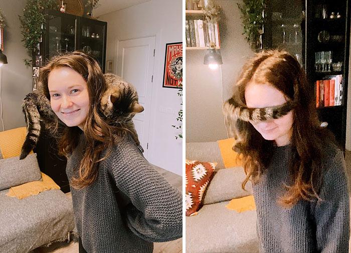 Shoulder Cat Or Cyclops?