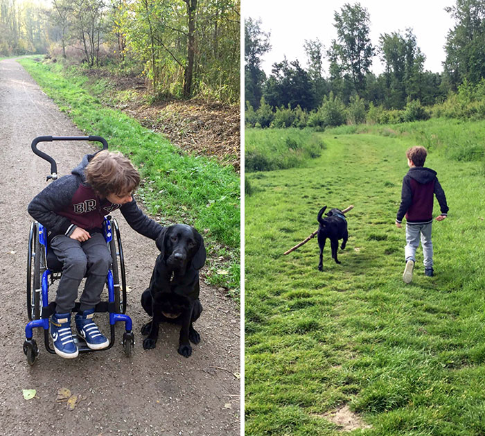 8 Months Ago, Our Son Got A Support Dog. Our Son Was Mostly Wheelchair Dependent. We Hoped His Dog Would Help Him Grow Stronger. I Think We Can Conclude That Together They Succeeded