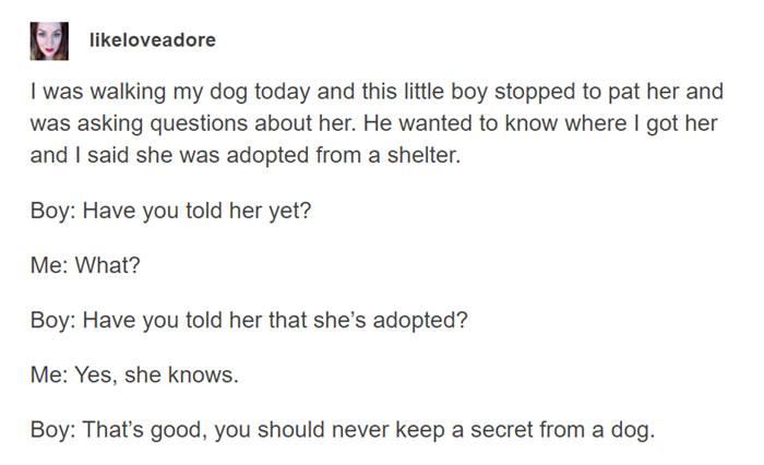 That's Why Dogs Are Human's Best Friends