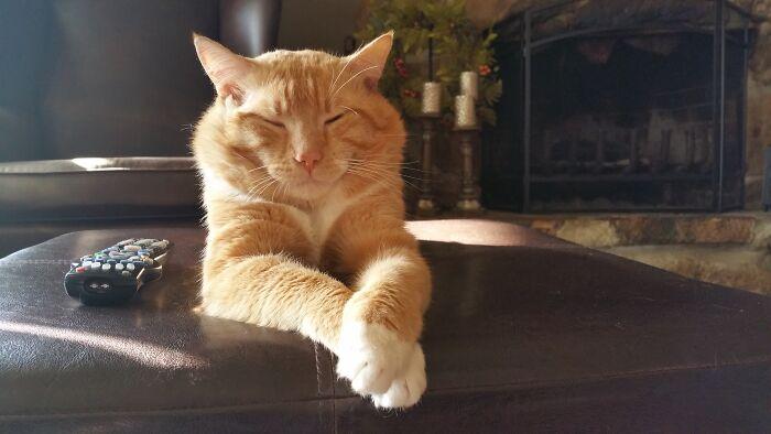 Walter P. Kitty