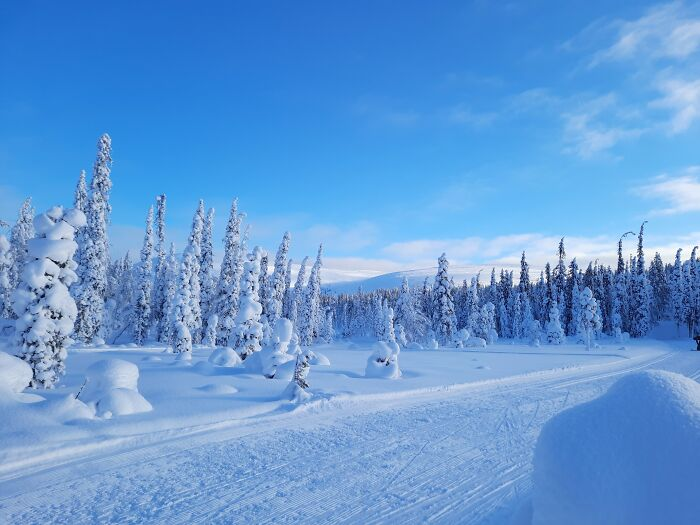 Skiing Trough White And Blue Scenery, February 2021, Äkäslompolo, Finland