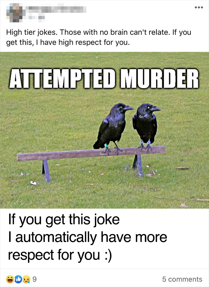 Haha... If You Don't Get The Joke, You Are An Absolute Moron