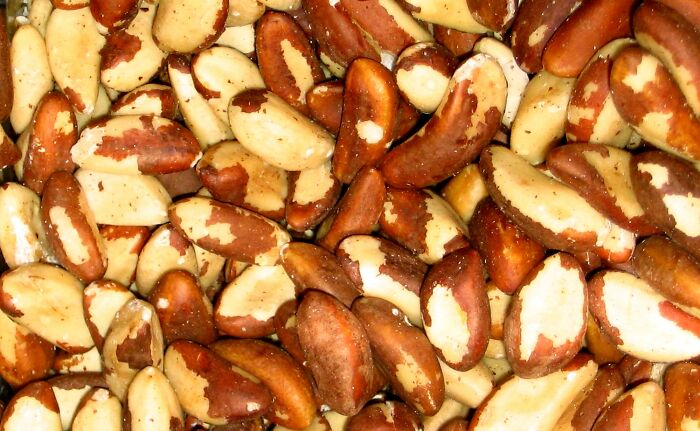 Til That A Woman Experienced A Brazil Nut Allergy After The Allergen Was Passed To Her From Her Partner's Semen During Intercourse. The Researchers Believe This To Be The First Case Of A Sexually Transmitted Allergic Reaction