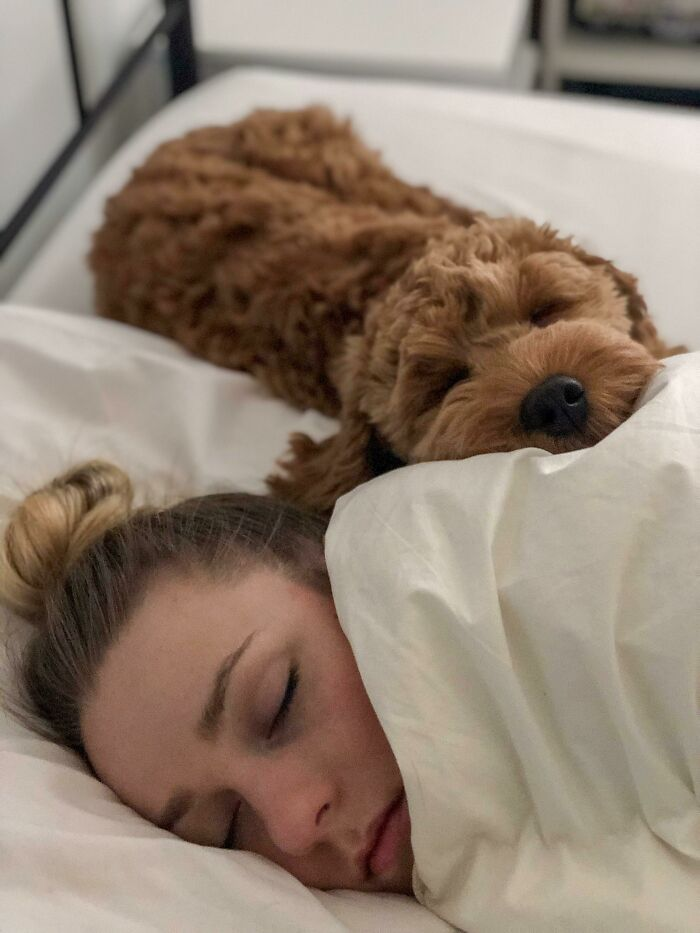 My Wife And Our Dog Marty As I Was Leaving For Work This Morning