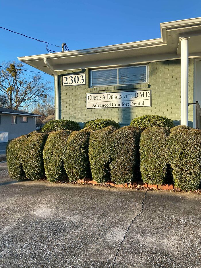 This Dental Office Trims Their Shrubs To Look Like Molars