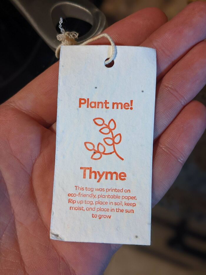 The Tag From My New Frying Pan Can Be Planted To Grow Thyme