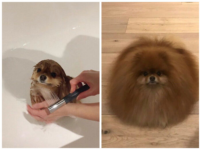 During And After A Shower