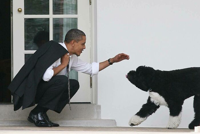 When A President Loves His Dog