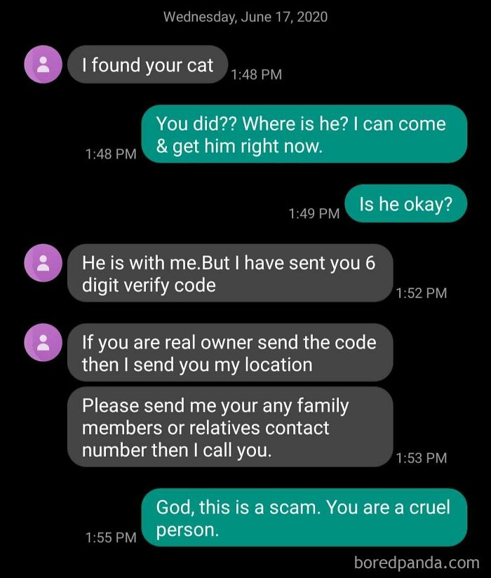 Apparently There Is A Market For Scamming People Whose Pets Are Missing