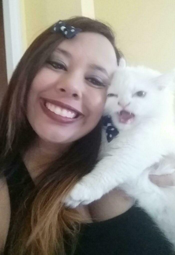 My Friend Tried To Take A Selfie With Her New Kitty