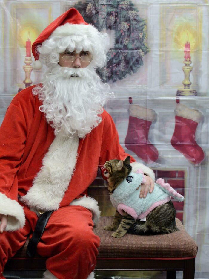 Silly Boy Hated Santa! I've Never Seen Him So Angry At Someone