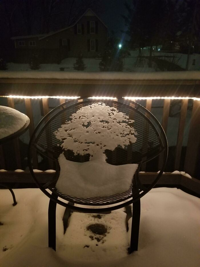 The Melting Snow On This Chair Looks Like A Tree