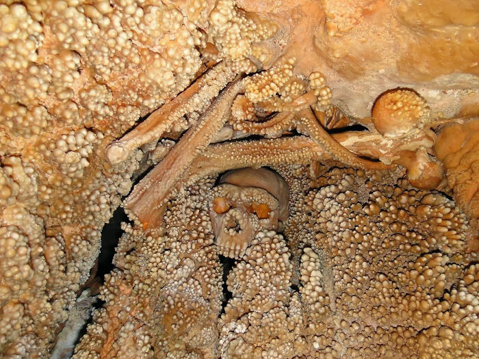 130,000-Year-Old Neanderthal Skull Encased In Stalagmites, Found In A Sinkhole In A Cave In Italy