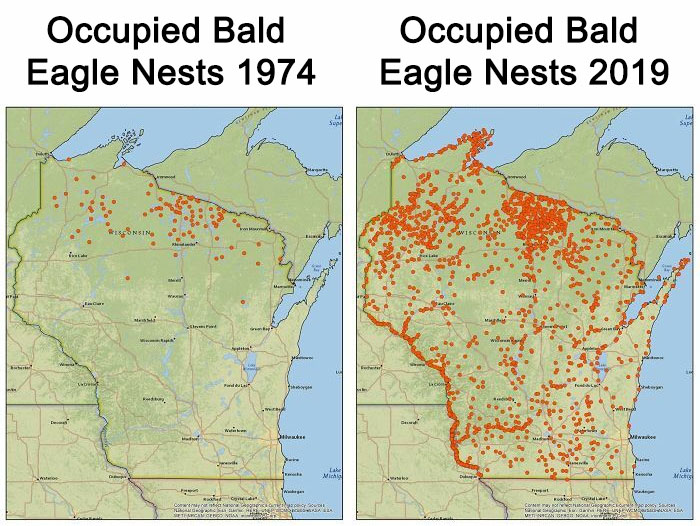Occupied Bald Eagle Nests In Wisconsin. 1974 vs. 2019. Growth Credited To The Clean Water Act
