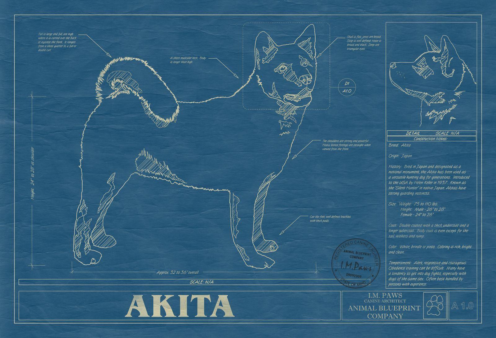 Blueprint Art – Dog Blueprints Architectural Renderings!