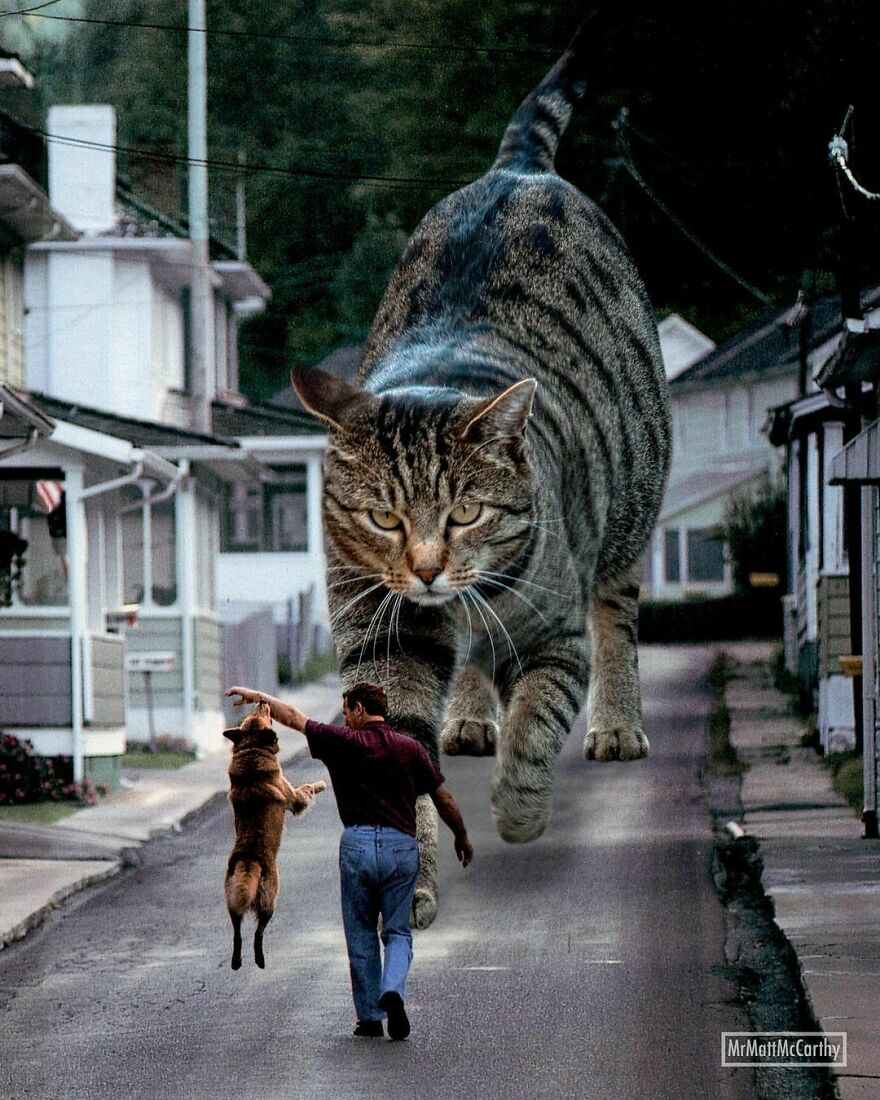 Artist Imagines The World With Giant Cats, And The Result Is Purrrfect