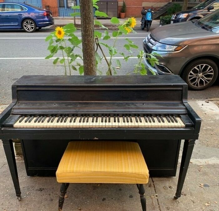 Listen, We Don't Ask For Much... But We Have An Ask. Before Picking This Beautiful Piano Up, Can We Hear A Song Or Two? We'll Play Them Here! Carlton Ave Between Myrtle And Willoughby!
