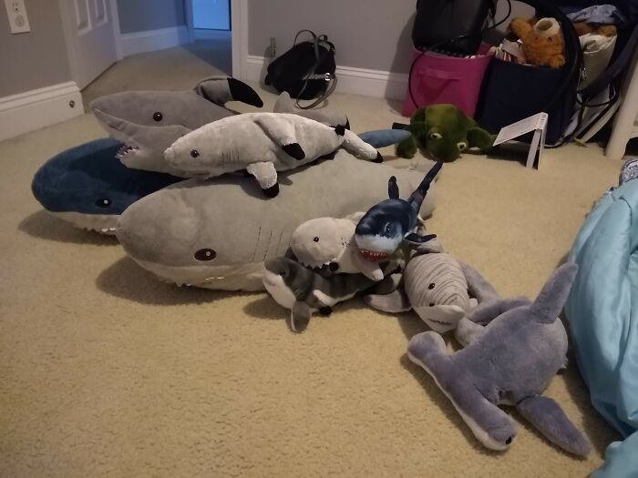 This Is My Shark Family.