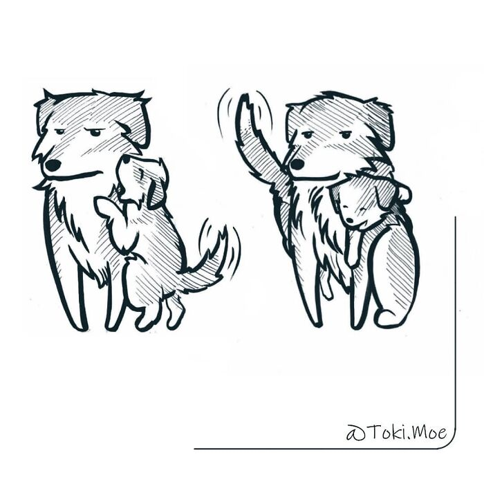 I Show What It's Like To Live With A Cat And A Dog In These 29 Comics