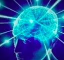 big-brain-6035424e5ff46.png