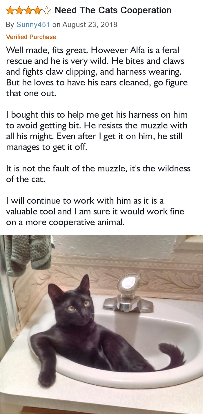It Is Not The Fault Of The Muzzle, It's The Wildness Of The Cat