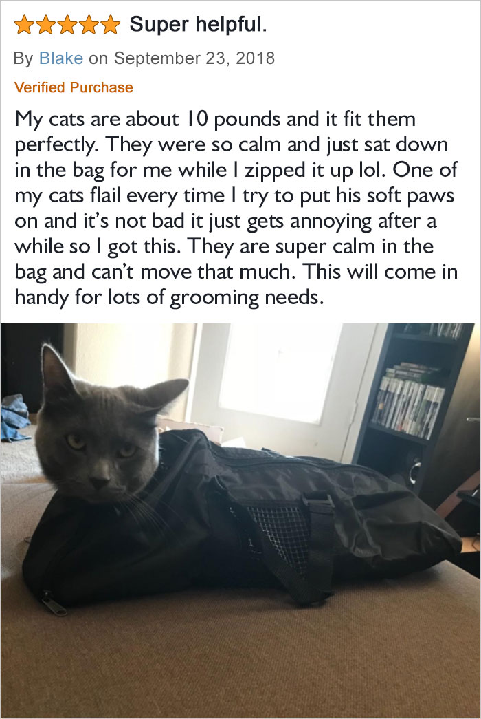 They Are Super Calm In The Bag And Can't Move That Much