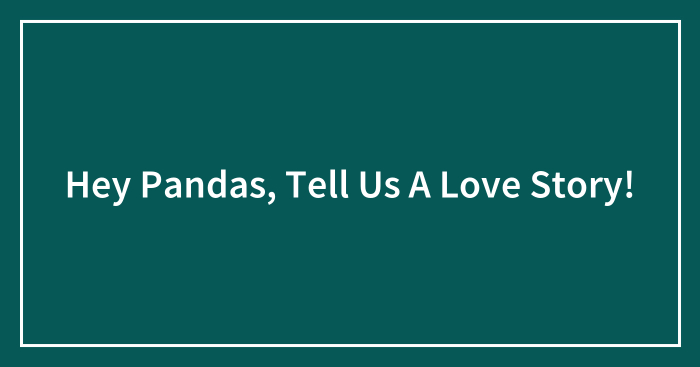 Hey Pandas, Tell Us A Love Story! (Closed)