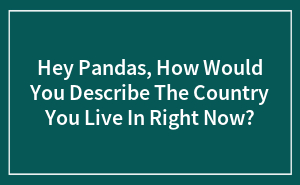 Hey Pandas, How Would You Describe The Country You Live In Right Now? (Closed)