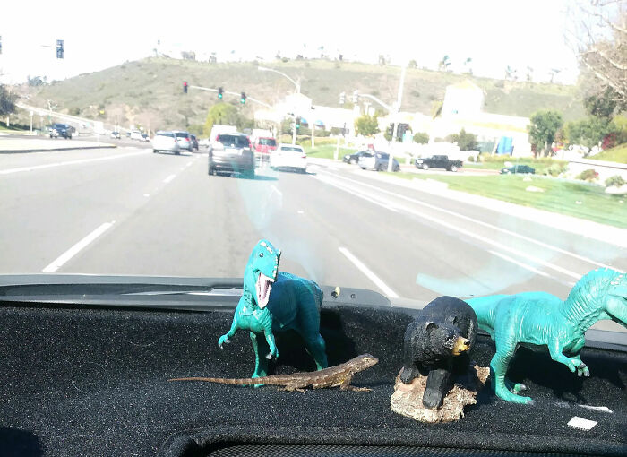On The Way To Work Today I Looked At My Dashboard With My Toy Dinosaurs On It, And I Thought, I Don't Remember Buying A Lizard