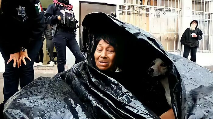 Homeless Woman Found In A Garbage Bag On The Street With 6 Dogs Refuses To Go To A Shelter Because They Don't Allow Pets