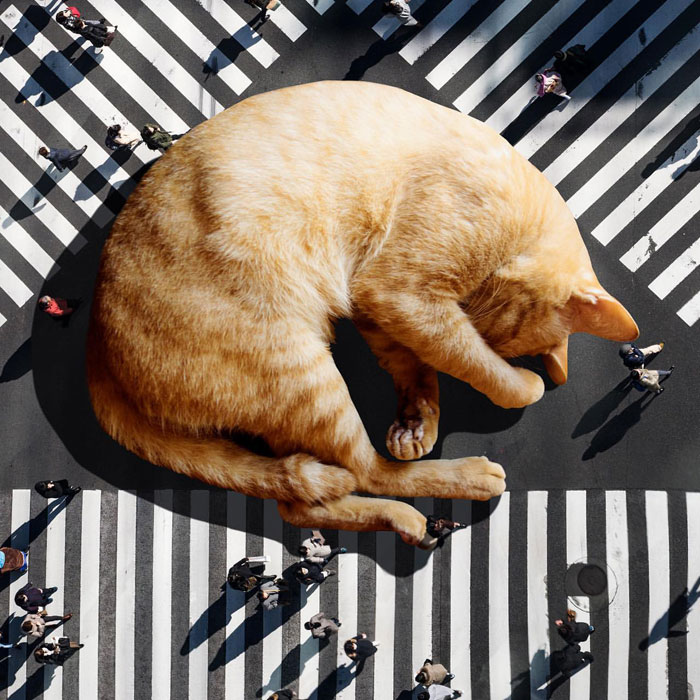This Artist Uses Photoshop To Create Surreal Giant Cat Landscapes, Here Are His Best 30 Edits