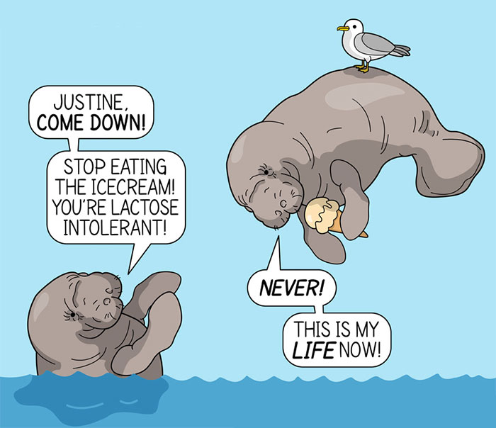 I Illustrate Unusual Facts About Animals (15 New Comics)