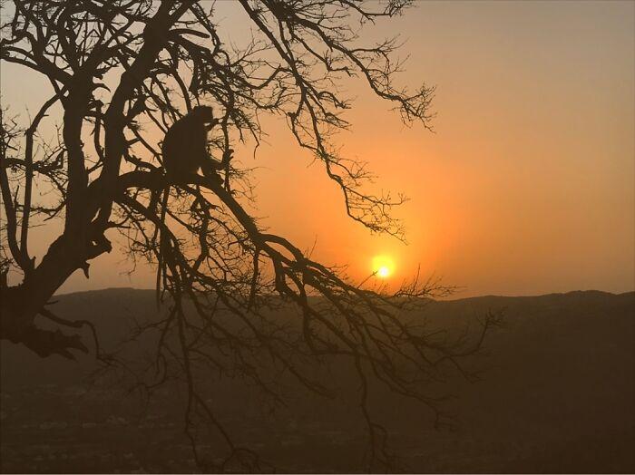 Sunrise When I Was Travelling In Pushkar, India