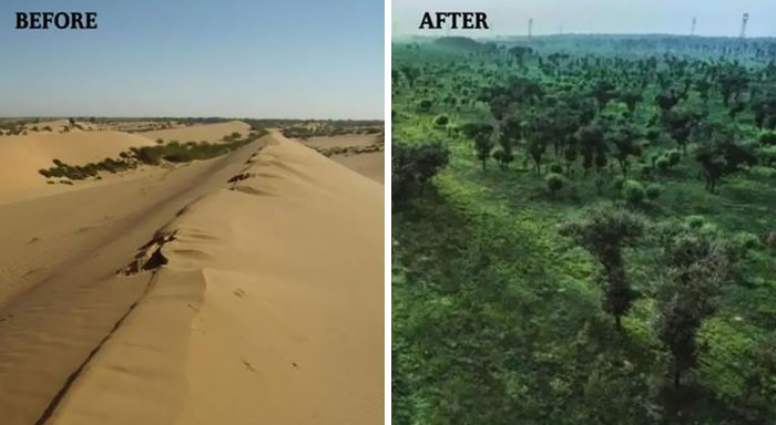 In Northwest China, The Mu-Us Desert, An Area Of 42,200 Square Kilometers, Has Disappeared