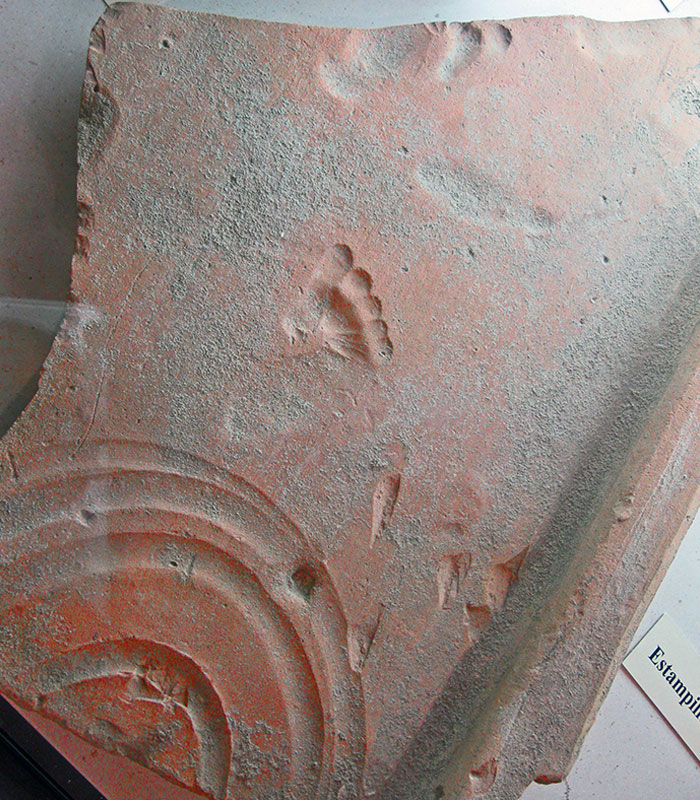 Oman Clay Tile With Footprint Left By A Toddler As It Dried 2000 Years Ago, Vaison-La-Romaine (Ancient Vasio Vocontiorum)