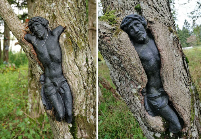 This Sculpture Of Jesus At Abandoned Cemetery In Poland Gets Slowly Absorbed By A Tree. Pictures Taken 12 Years In Between
