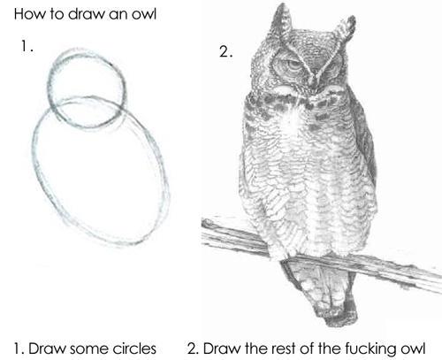 owl-602565412d116.jpg