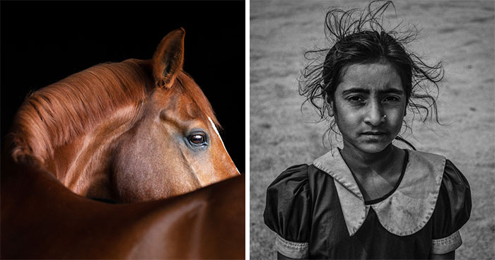 Sony National & Regional Photography Awards Announces Its Winners And They're Pretty Impressive