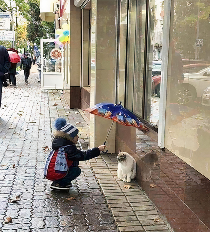 Kid Learning To Be A Good Person Early On