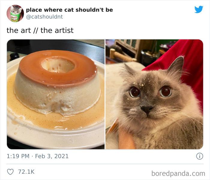True Artist