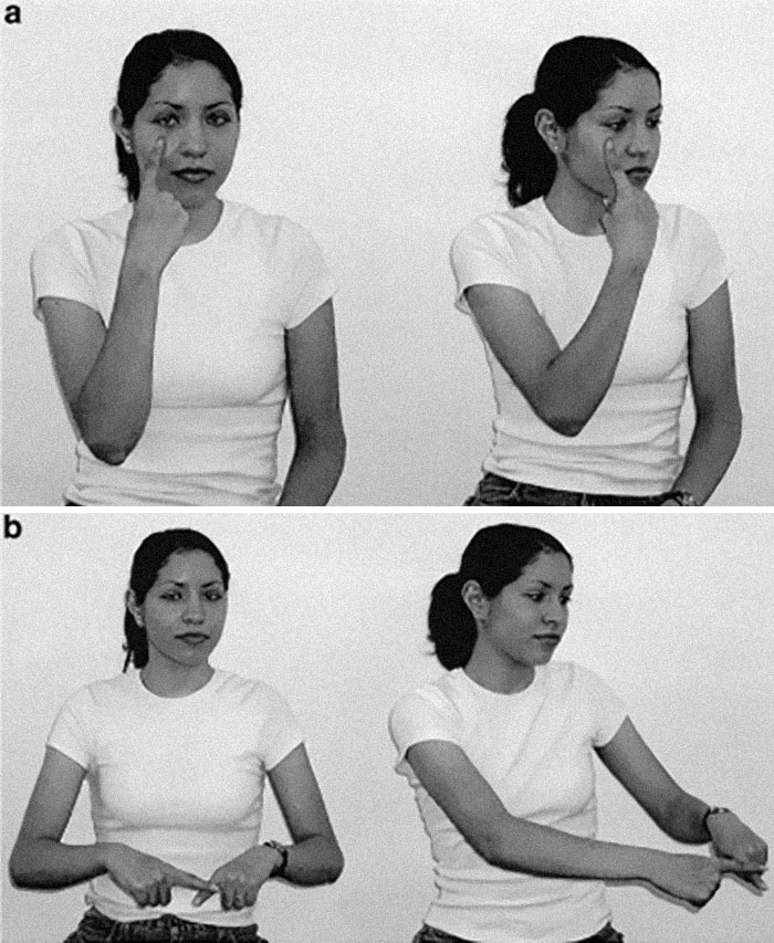 Til Nicaraguan Sign Language Is A Sign Language That Spontaneously Developed Among Deaf Children In Nicaragua In The 1980s. It Is Of Particular Interest To Linguists Because It Is Believed To Be To Be An Example Of The Birth Of A New Language, Unrelated To Any Other.